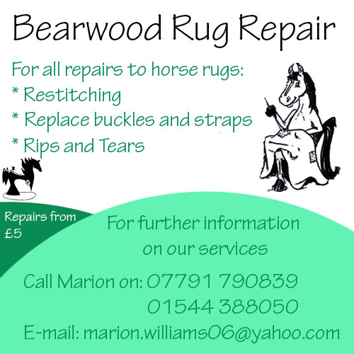 Bearwood Rug Repair