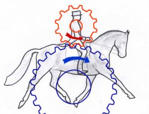 'Horse and Rider Biomechanics' @ Canon Pyon Parish Hall | Canon Pyon | England | United Kingdom
